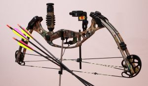 a compound bow in side view