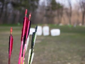 arrows and in the background some archery targets