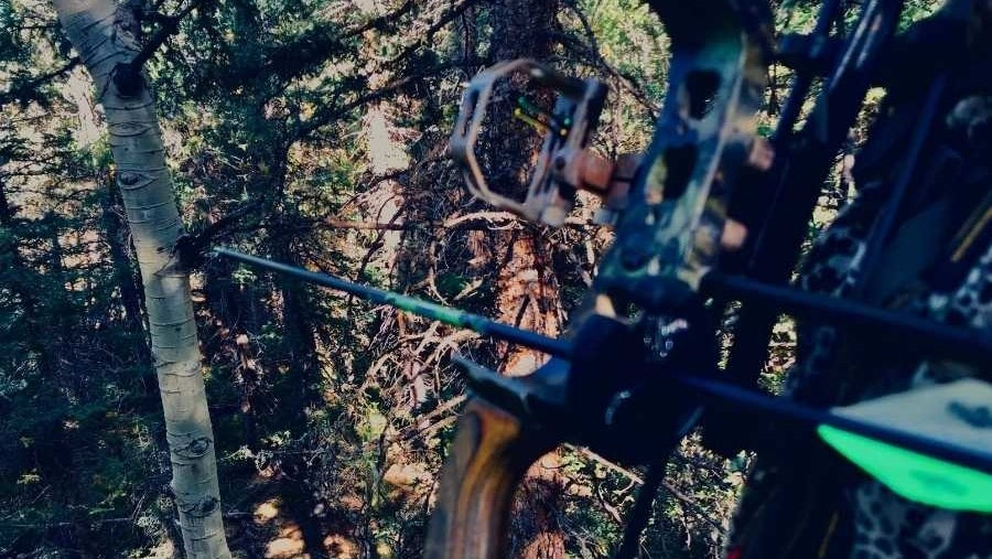 man sitting in tree stand with a bow