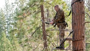 a man standing in a tree stand
