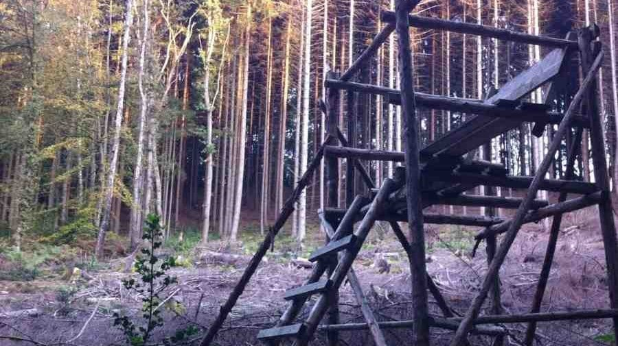 a hunting stand in the woods