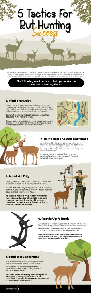 a infographic 5-tactics-for-rut-hunting-success_