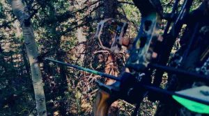 a man sitting in his tree stand with a compound bow