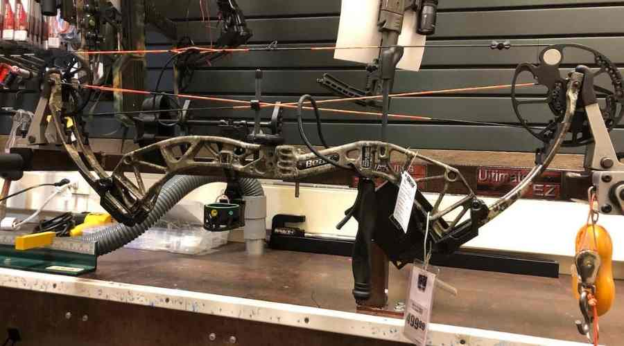 Bear Paradox Compound Bow Featured Pic