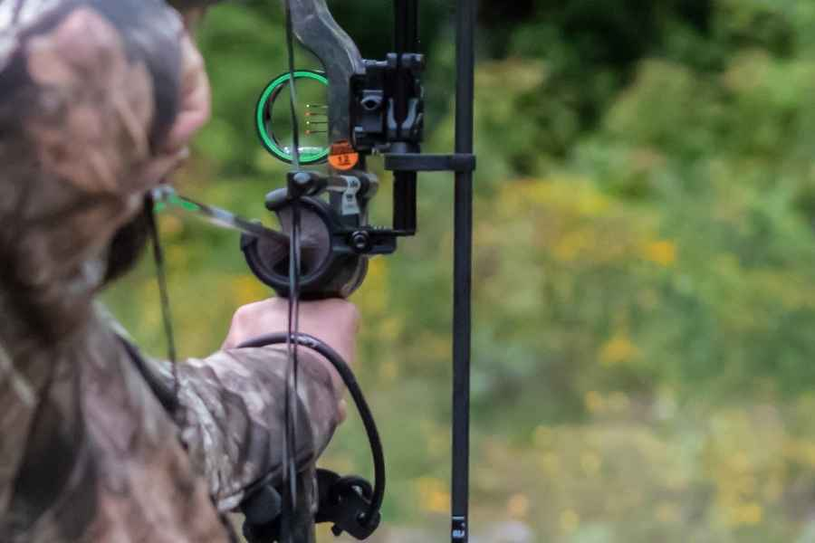 whisker biscuit on a compound bow
