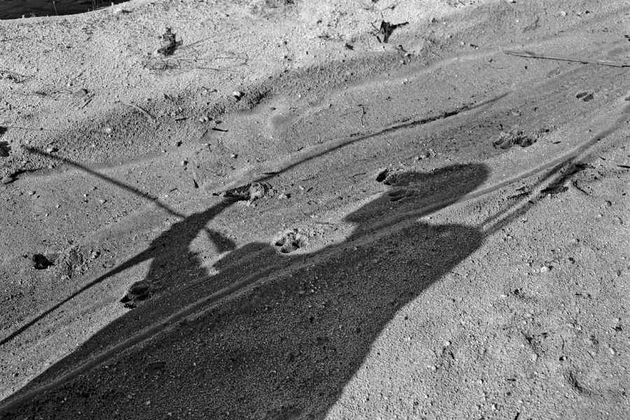 Shadow of a bowhunter